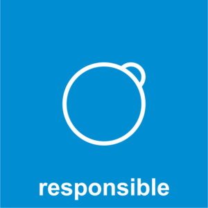 Design Question What 13 responsible design